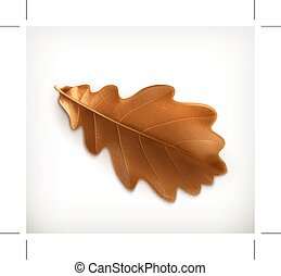Oak leaf illustration - Oak leaf, illustration, isolated on ...