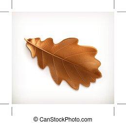 Oak leaf, illustration, isolated on white background