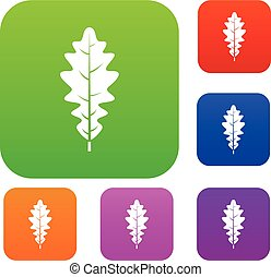 Oak leaf set color collection