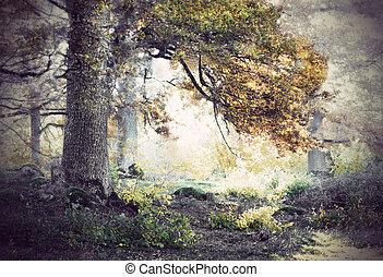 Oak ree in autumn