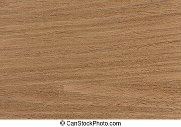 Oak texture on macro, natural background.