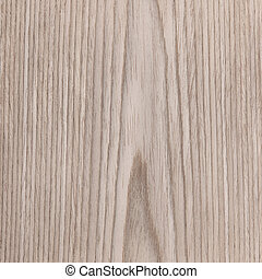 oak texture wood, tree background