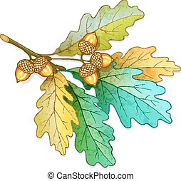 Oak tree branch with acorns and dry leaves