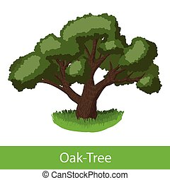 Oak-Tree cartoon icon