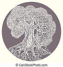 Oak tree illustration. Stylized vector isolated