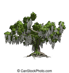 Oak tree isolated. Vector illustration