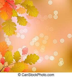 Oak Tree Leaves of Autumn
