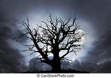 oak tree with moon - silhouette of spooky bare oak tree on...