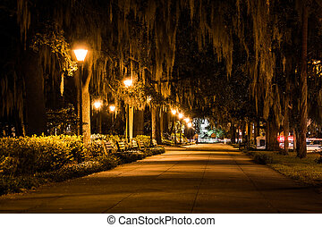 Oak trees and path at night in Forsyth Park, Savannah, Georgia.