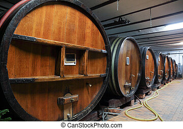 Oak wine barrels in a wine cellar