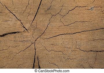 oak wood grain background