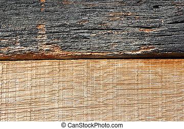 oak wood texture 1