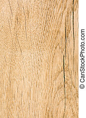Oak wood. High-detailed wood texture series.