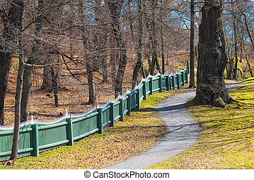 Oakforest with fence in spring