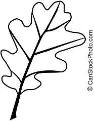 oak,Quercus petraea - beech,Quercus petraea, vector,...