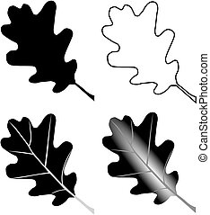 oak,Quercus petraea, vector, isolated oak leaf,