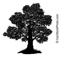 oaktree, och, gräs, silhuett