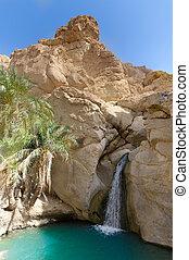 oasi, cascata