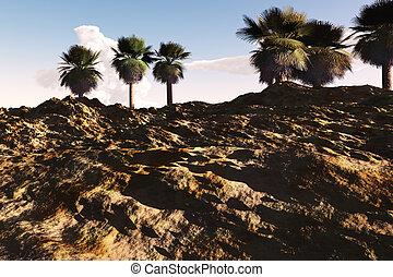 oasis, désert