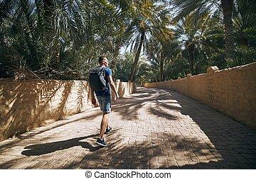 oasis, désert, solo, voyageur