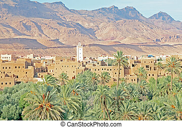Oasis, desert and table mountain in Morocco