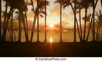 Oasis in desert with water pond and palm trees at sunset, panning