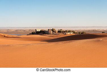 Oasis in the Sahara desert, Morocco, Africa
