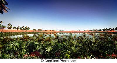 oasis panoramic in desert