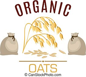 Oat cereal vector poster or emblem - Oat vector icon or ...
