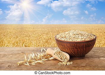 oat grains in bowl and scoop, ears of oats on wooden table with field on the background. Ripe field, blue sky with beautiful clouds and sun. Agriculture and harvest concept
