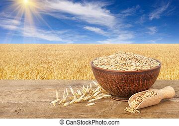oat grains in bowl