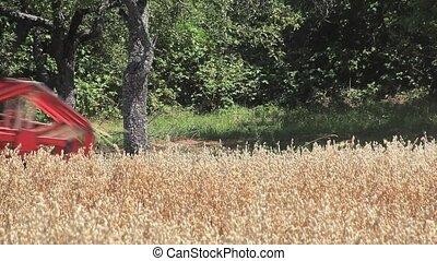 Oat Harvesting - Harvesting Oat Field