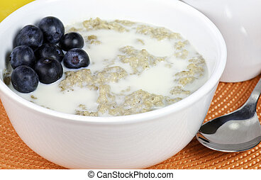 Oat meal breakfast - A bowl of oat meal and berries