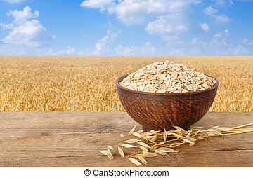oatmeal in bowl on nature background