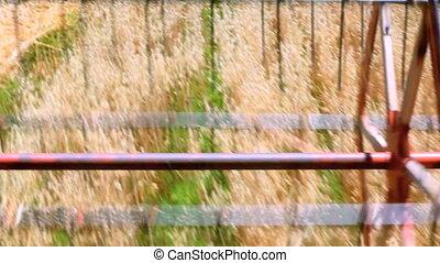 Oats Harvesting - Harvesting Oats Field