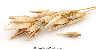 Oats on a white background