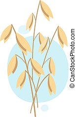Oats, plant. Vector illustration on white background.
