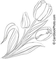 oavgjord, tulips., hand