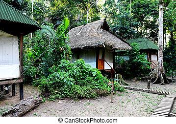 obóz, w, przedimek określony przed rzeczownikami, dżungle,...