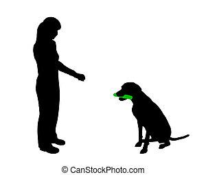(obedience):, entrenamiento, asimiento, comando, perro