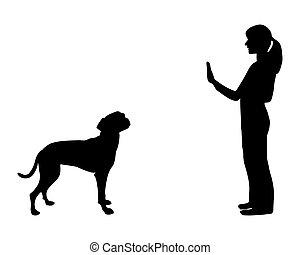 (obedience):, entrenamiento, parada, comando, perro