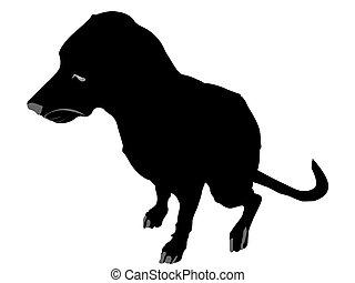 obediente, perro