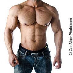 oberkörper, arme, muskulös, bodybuilder, waschbrettbauch,...
