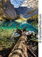 Obersee Berchtesgadener Land, Bavaria, Germany.