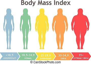 obesidad, vector, peso insuficiente, cuerpo, degrees., masa, índice, siluetas, diferente, ilustración, obese., mujer, sumamente