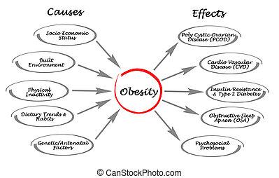 obesity:, 原因, 効果