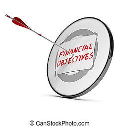 objetivos, concepto, financiero, realizando