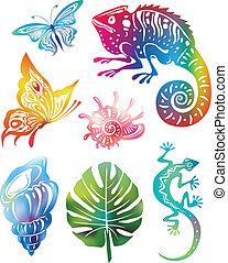 objetos, coloreado, naturaleza