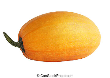 Single fresh pumpkin isolated on white background