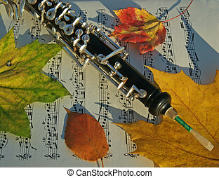 Oboe on Fall Leaves - oboe with autumn maple and birch...